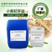 批发供应小麦胚芽油小麦胚芽油的作用和功效