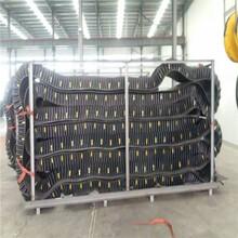 青岛挡边输送带厂家-输送带钢丝绳芯输送带销售厂家图片