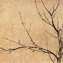 重庆渝中哪里可以?#19994;?#19987;业鉴定古画的机构?