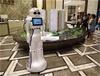 大白機器人自主迎賓機器人
