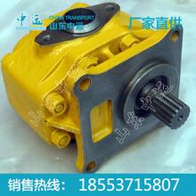 变速泵厂家直销变速泵价格