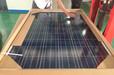 全国供应英利多晶硅太阳能电池板20-260w规格可选正品保证十年包换