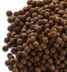纯天然宠物食品进口宠物粮食包税进口