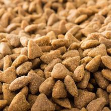 澳洲宠物粮食香港进口清关运输