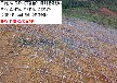 gps2主动防护网边坡主动防护网拦石效果好
