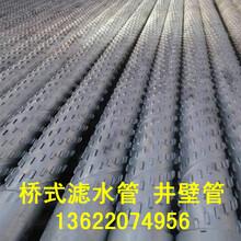 供应桥式滤水管过滤水管滤水器用于温泉井水井农田井水利井