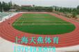 上海天蕉专业奉贤塑胶跑道铺设价格