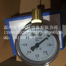 压力表温州先宇供应卫生级过滤器用压力表图片