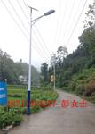 湖南永州农村路灯价格永州太阳能路灯厂家批发价格优惠质量一流图片