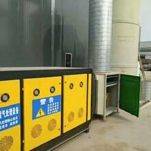 山東濟寧-廠家低價廢氣處理空氣凈化器圖片