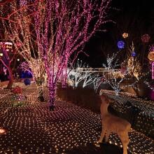 圣诞灯和彩色的装饰物装饰出租圣诞节主题制作