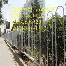 石嘴山市政护栏价格多少钱一米,优质护栏鑫乾厂家制造