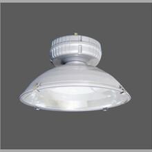 GC106免维护节能无极灯