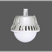 GC203防水防尘防震防眩灯