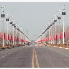 海南风光互补太阳能路灯/三亚风光互补太阳能路灯厂家/风光互补路灯配置规格
