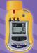 ToxiRAEProEC个人用氧气/有毒气体检测仪