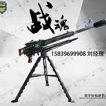 驻马店气炮枪厂家低价处理新款气炮枪,射击气炮、战魂图片