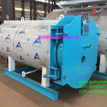 河南长葛蒸汽锅炉进口燃烧器双燃料锅炉低氮锅炉图片