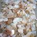 脱皮淡水贝壳粒贝壳颗粒,人造石辅料
