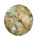 金色贝壳珍珠贝壳工艺品贝壳