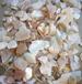淡水贝壳粒贝壳颗粒,人造石辅料