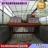 槽式翻抛机翻堆机设备价格厂家介绍