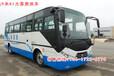 廠家直銷EQ5110XLHT6D型東風超龍A1大型客車教練車