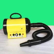双航SH-168超静音宠物吹水机吹风机
