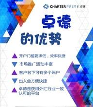 Charterprime卓德代理商加盟/卓德驻中国上海办事处欢迎您的加入/卓德外汇招商