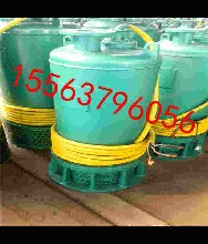 陕西矿用防爆潜水泵BQS安泰潜水泵排沙泵污水泵图片