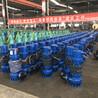 吉林直供380v廠用防爆污水泵WQB30KW市政排污泵