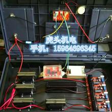 南通高压电捕野猪机技术原理图片