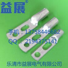 华为/思科设备原装JG2-16-616平方镀锡双孔铜鼻子接线端子