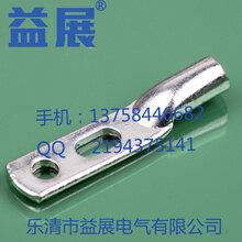 热款直销华为/思科设备原装镀锡双孔铜鼻子2-35-635平方接线端子