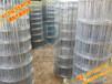 河北联德生产黑龙江草原网牛栏网畜牧网养牛网养殖护栏网