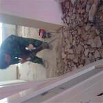 供应黄江玻璃隔断,黄江轻质砖隔墙,黄江石膏板隔墙,黄江彩钢板隔墙-施工进度快图片