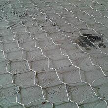 江西堤坡防护石笼网、加筋石笼网规格报价