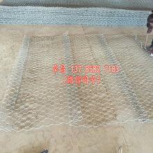 牡丹江石笼网箱现货供应、铁丝石笼网多钱一平