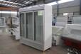供应厂家直销立式冷冻陈列柜经济型陈列展示柜新款冷冻陈列柜