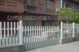 廣州pvc塑鋼護欄pvc欄桿價格草坪護欄綠化柵欄免維修