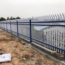 广东中山别墅庭院围栏公园铁艺护栏厂区隔离栅栏活动儿童围栏