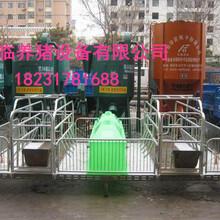 河南郑州登封养殖设备生产热销2.13.6产床定位栏质优价廉