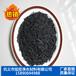 高效水处理除污活性炭煤质柱状活性炭生产商