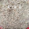 供应水洗无尘圆粒沙天然海沙儿童娱乐专用无尘沙