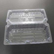 大阐蟹吸塑盒大阐蟹打包盒生鲜吸塑食品包装盒上海广舟