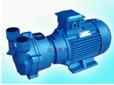 东莞2BVA5131水环式真空泵及压缩机迷你型真空泵生产