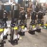 锅炉给水多级泵立式锅炉给水增压泵厂家直销