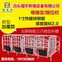 母猪产床限位栏提高养猪场的数量图片