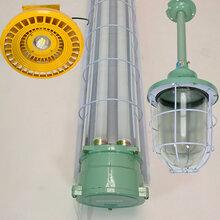 古镇供应LED防爆灯直管防爆灯圆形防爆灯100W200W250W图片