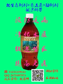 黄金精华液——杀菌、改水、促生长!